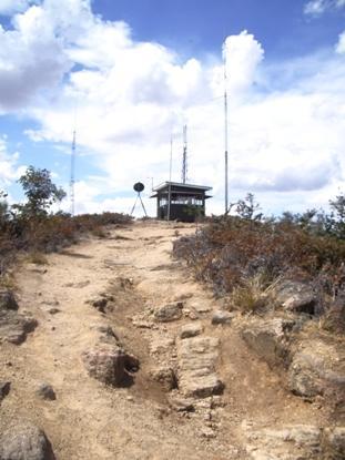 Mt Wombat Firetower