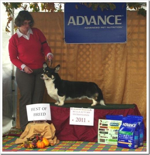 Susan and Monty - The Oak Championship Show