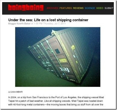 sunken shipping container
