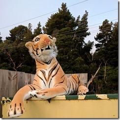 Abandoned Tiger 2
