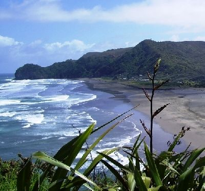 North Piha from Lion Rock.JPG